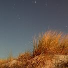 Night, Sand-Dune Grass by Gavin Kerslake