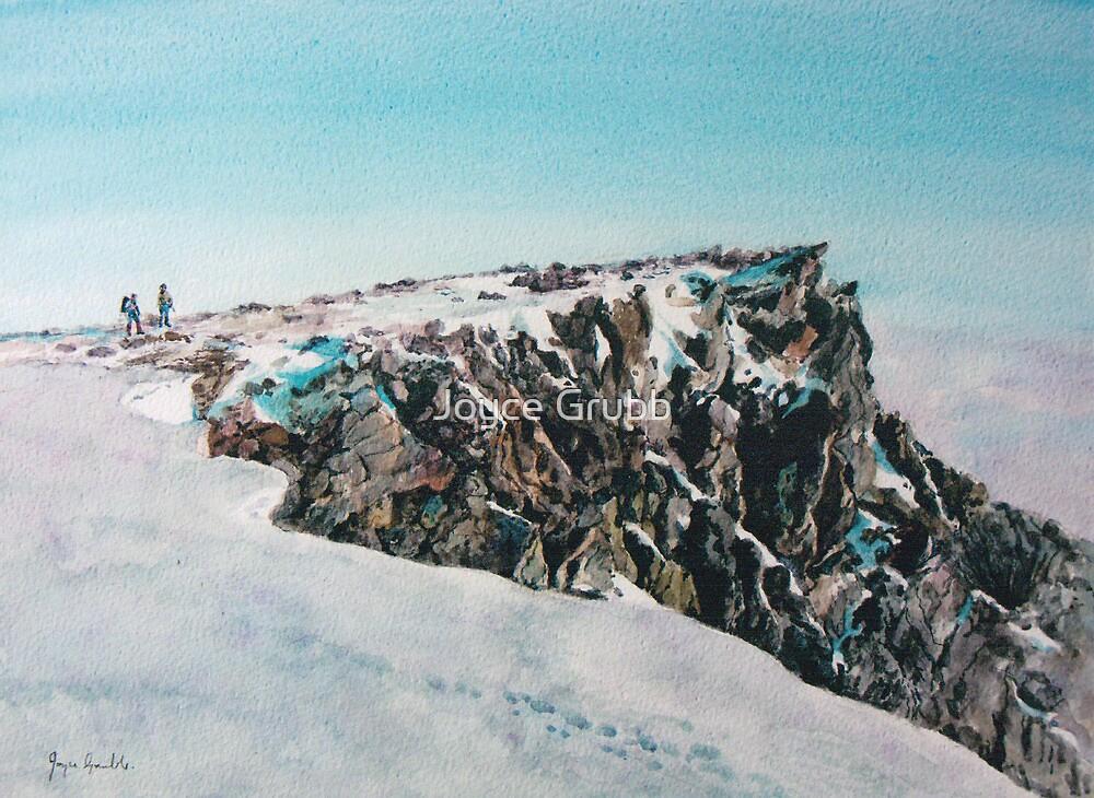 Reach for the sky - Braeriach, Cairngorms by Joyce Grubb