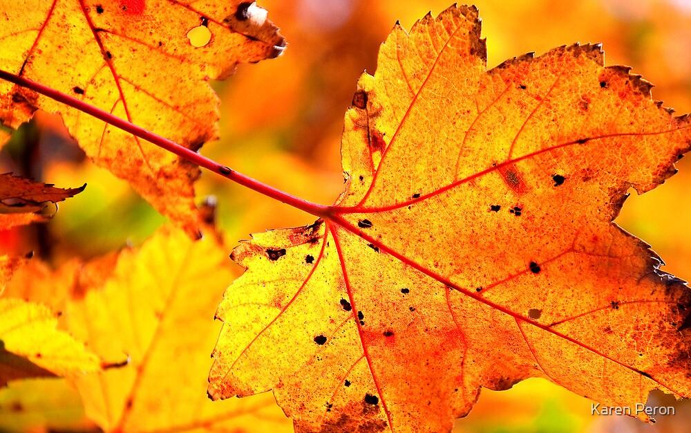 Veins of Autumn by Karen Peron