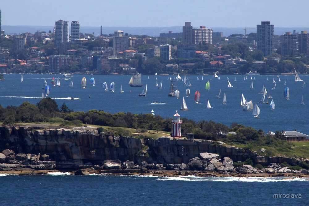 north head manly - fun in the sun by miroslava