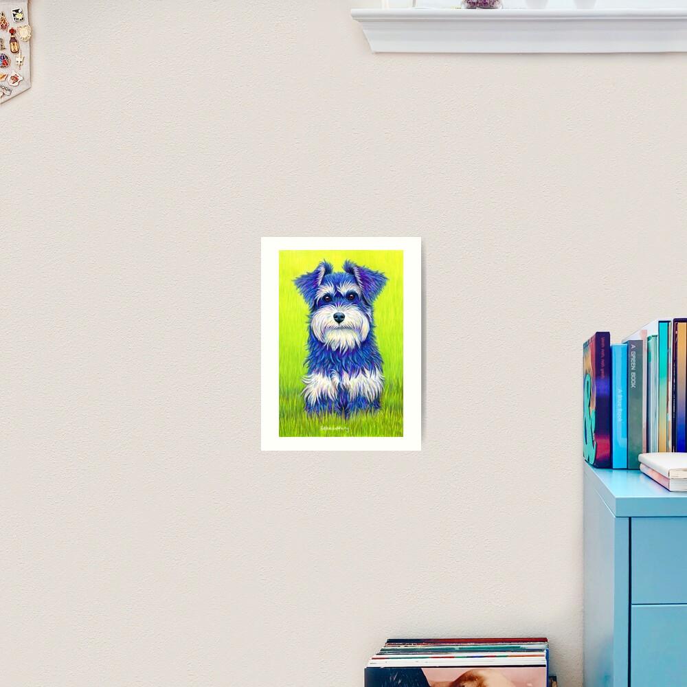 Curiosity - Colorful Miniature Schnauzer Dog Art Print