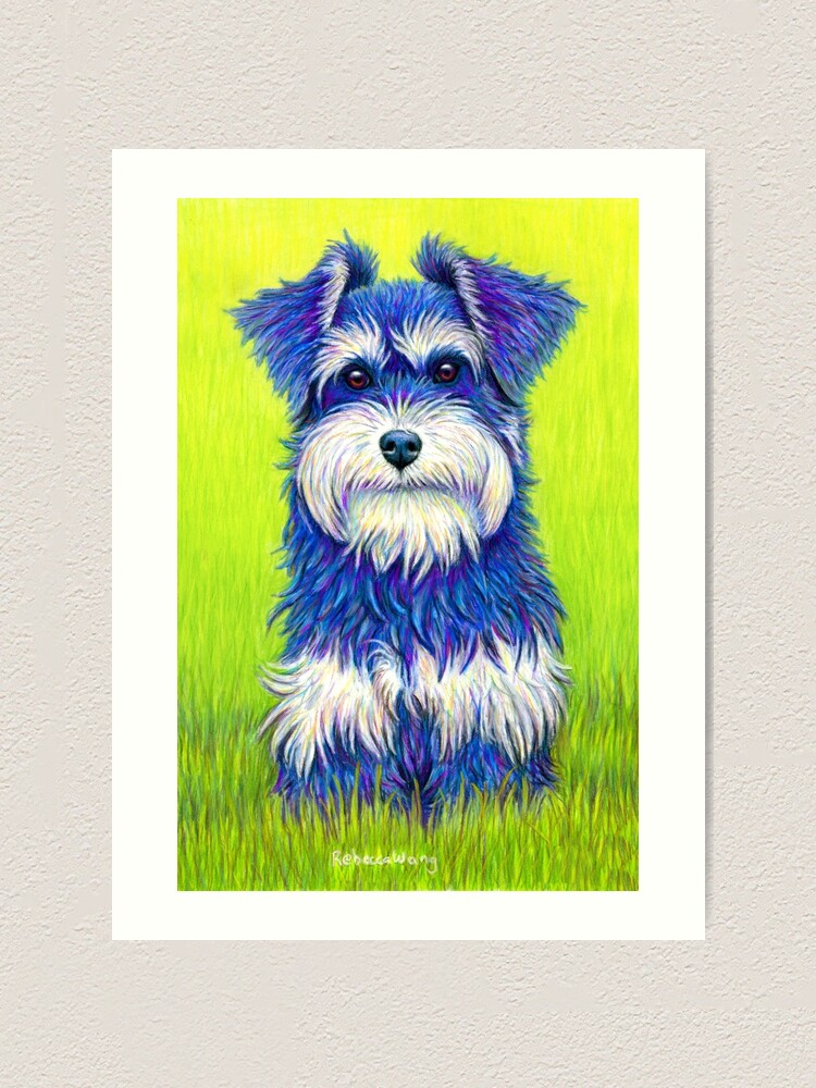 Alternate view of Curiosity - Colorful Miniature Schnauzer Dog Art Print