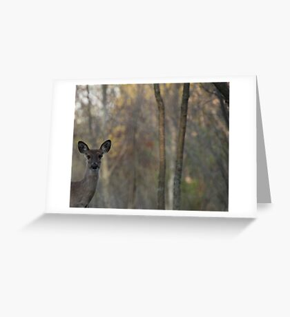 Deer is proud of his forest! Greeting Card