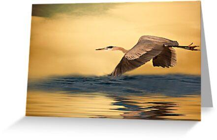 Heavenly Flight by Susan Gary