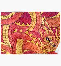 Coiled Dragon Poster