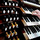 Organist and keyboards by Jenny Setchell