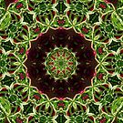Red-Green Floral Manadala IPhone or IPod Case by lightvision
