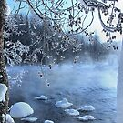 View on the river in the winter by Kari Liimatainen