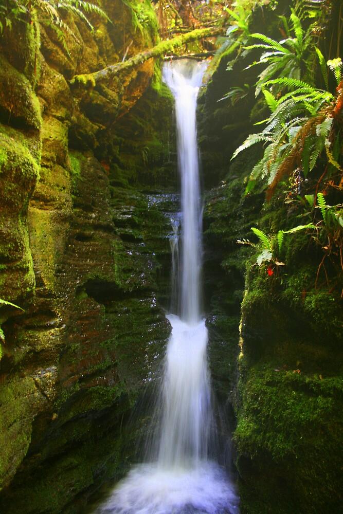 Myrtle Falls by Nigel Butfield