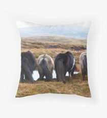 Shetland Ponies drinking (highlighted) Throw Pillow