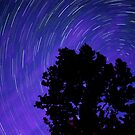 Ohio Night Sky - Star Trails by Gregory Ballos