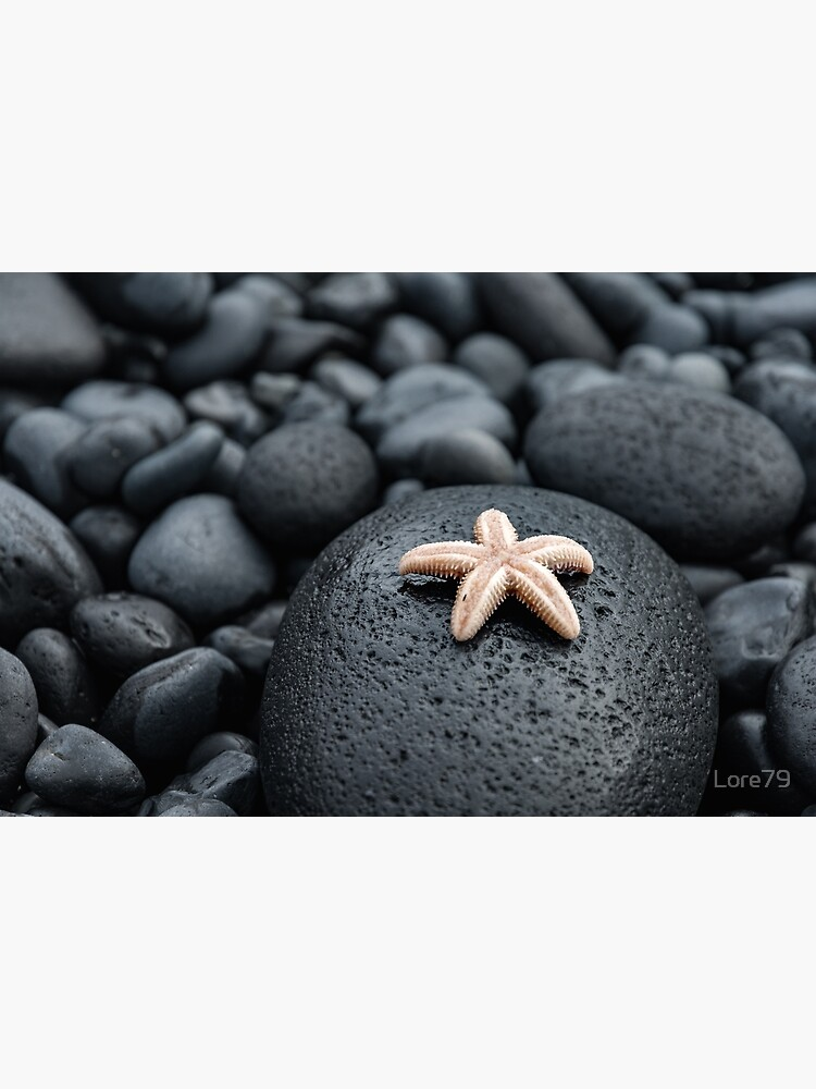 Cute starfish on lava rocks by Lore79