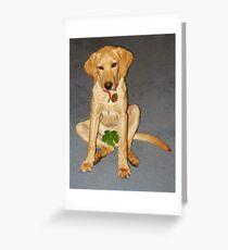Shy dog Greeting Card