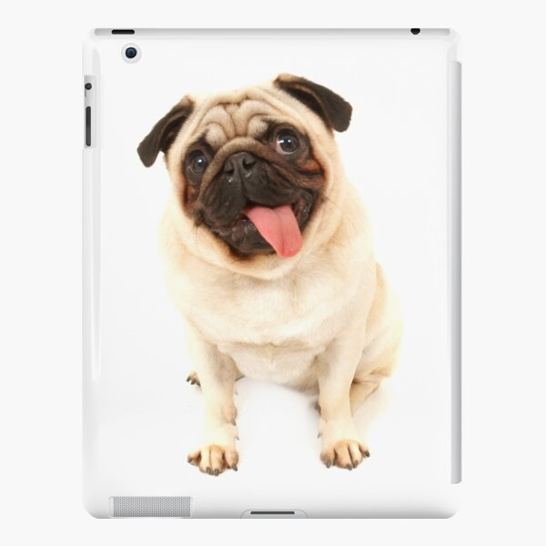 pug iPad Snap Case