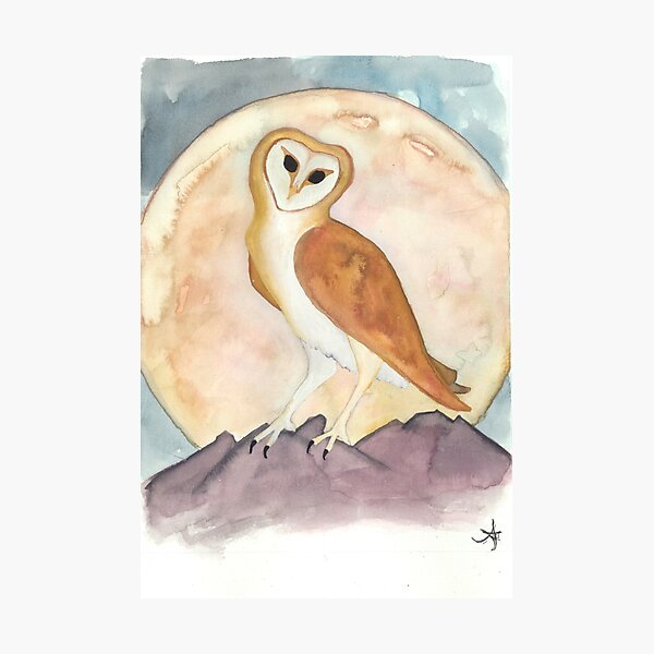 Owl in the Moonlight Photographic Print