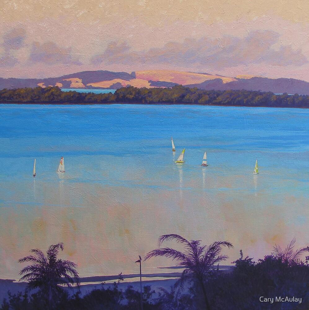 From Carlton Terrace by Cary McAulay