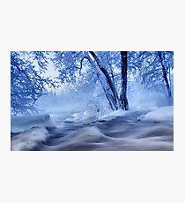 winter wonders Photographic Print