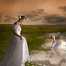 Swan Lake 3 by shall