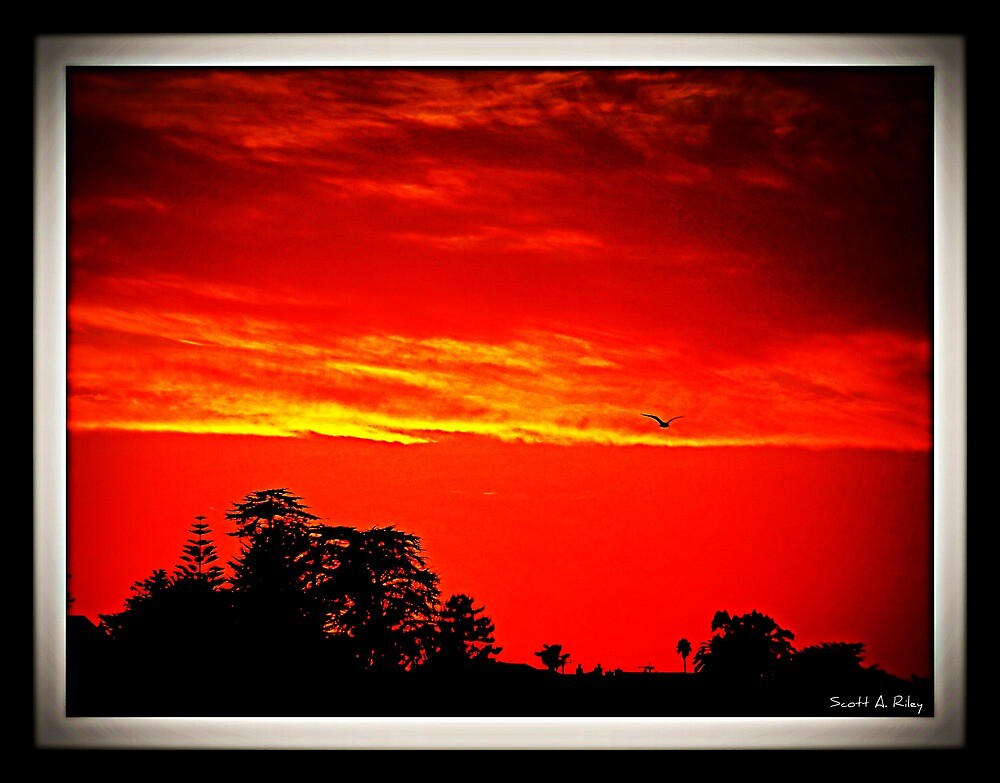 Sun Set By The Bay by Scott Riley