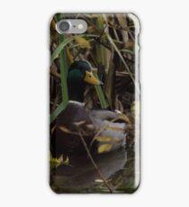 a wild duck appeared  iPhone Case/Skin