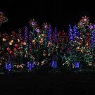 Happy Holidays! by Olga Zvereva