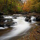 Autumn in Glen Leigh by Tim Devine