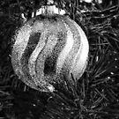 Ornament by vigor