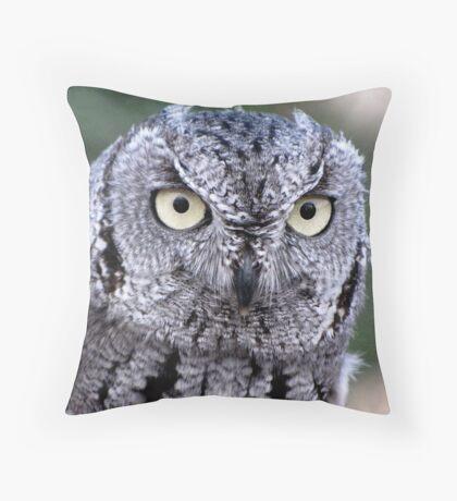 Western Screech-Owl Throw Pillow