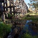 Reflecting on the Old Bridge. by John Sharp