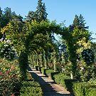 Arbour, Butchart Gardens by SusanAdey