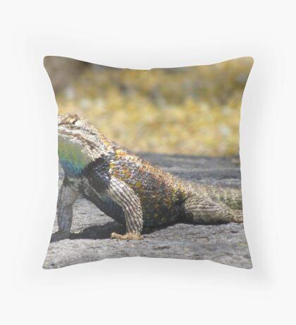 Desert Spiny Lizard ~ Male Throw Pillow