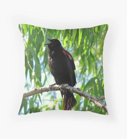 Red-winged Blackbird ~ Male Singing Throw Pillow