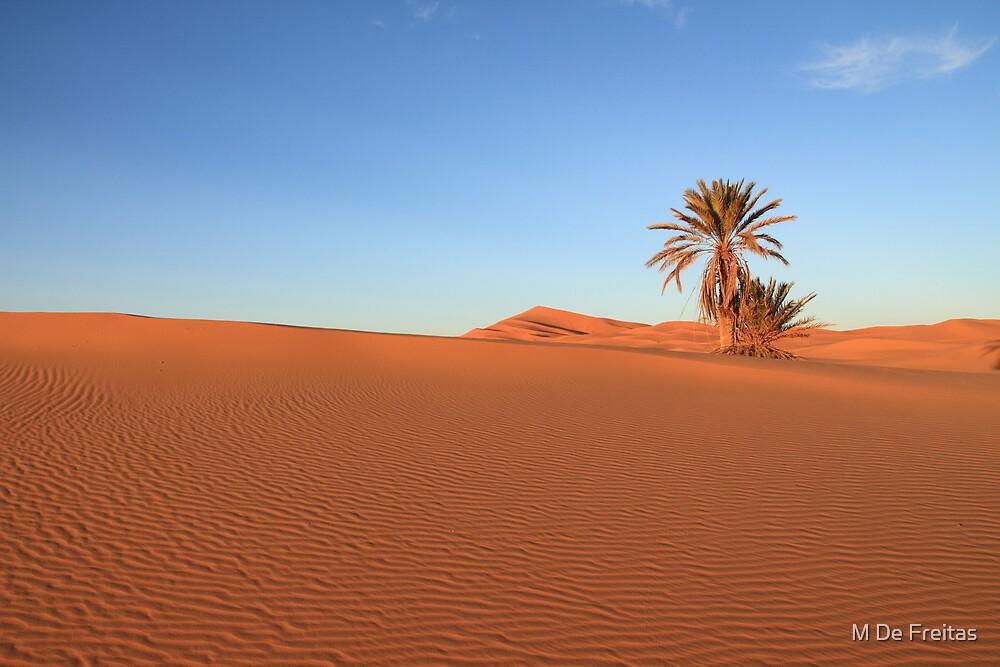 Morocco by M De Freitas