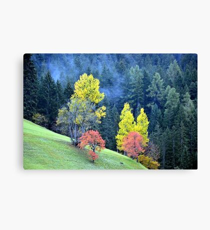 Fall colors at Plaetzwiese Canvas Print