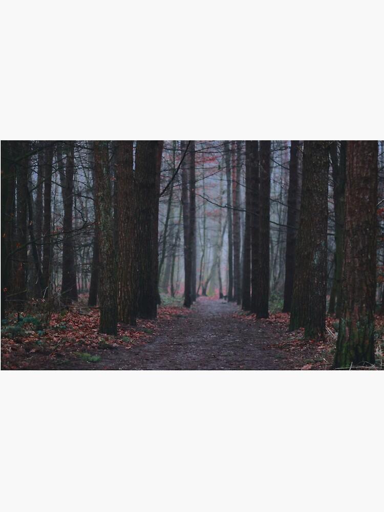 Dunkle Wälder von ancienthearts
