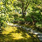 Stepping Stones, Butchart Garden by SusanAdey