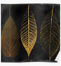 Fallen Gold Autumn Leaves I Poster