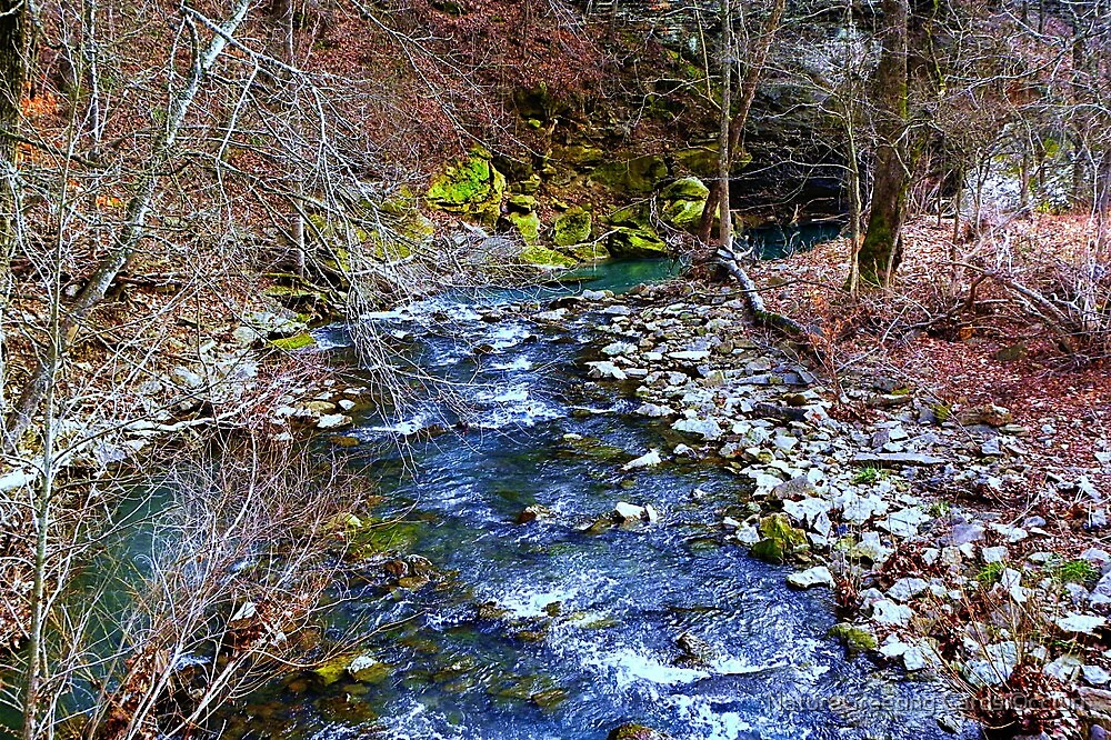 Dabney Creek by NatureGreeting Cards ©ccwri
