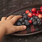 Loves blueberry fruits by Pawel Paszkowski