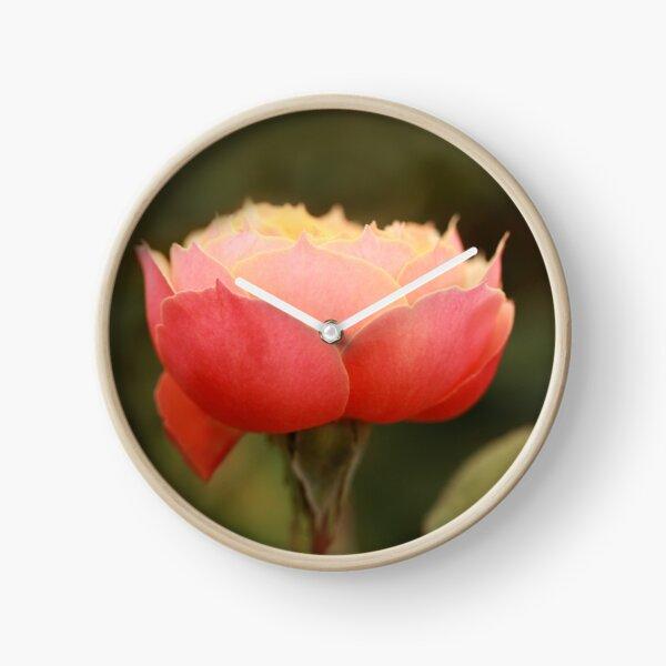 Coral & Pink Rose Clock