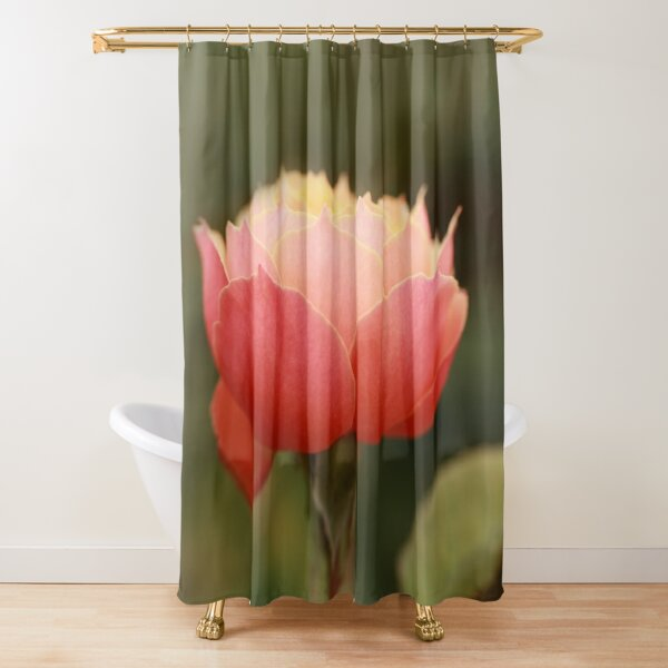 Coral & Pink Rose Shower Curtain