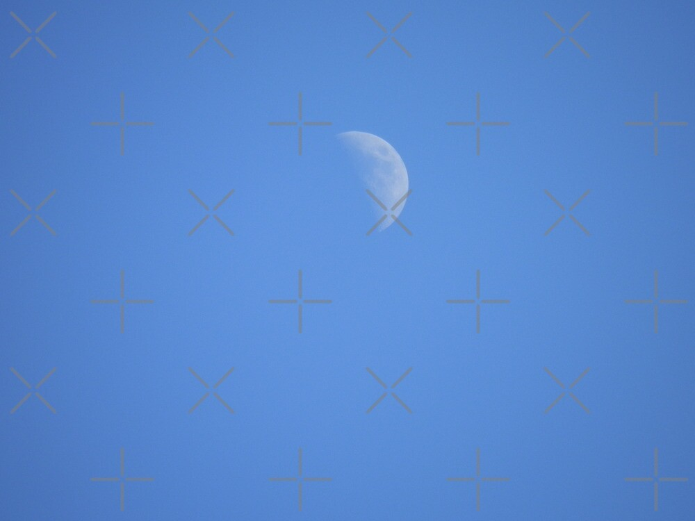 Another Daytime Moon by Scott Mitchell