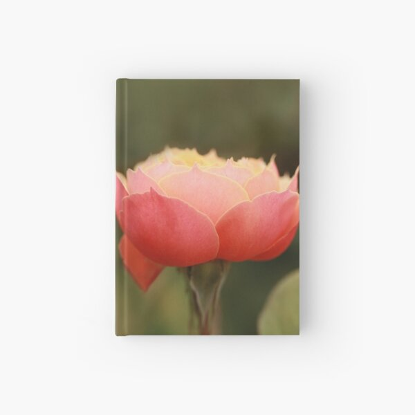 Coral & Pink Rose Hardcover Journal