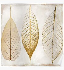 Fallen Gold Autumn Leaves II Poster