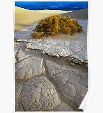 Death Valley Mudflat Poster