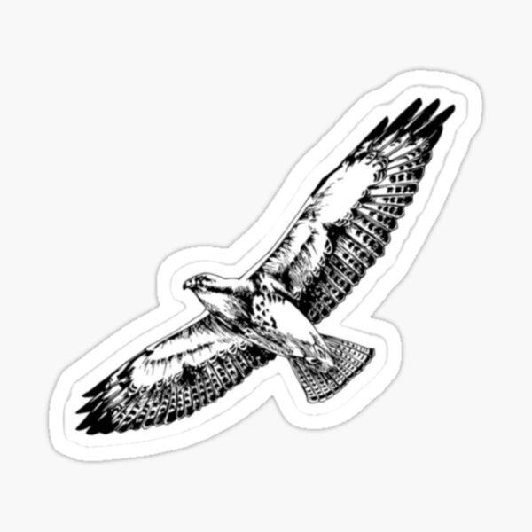 Flying Hawk Birds Of Prey Sticker Sticker
