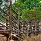 Cattle ramp by BigAndRed