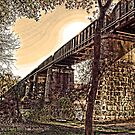 The Railroad Bridge Over Lady Bird Trail, Austin - Texas by Jack McCabe