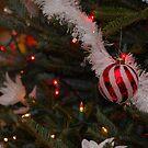 Merry Christmas by Shane Jones