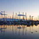 Yachts and Sailboats - Lake Ontario Impressions by Georgia Mizuleva